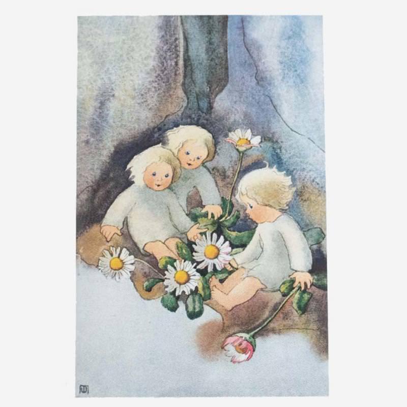 Postkarte Gänseblümchen von Mili Weber