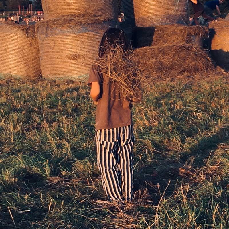 Kinder Hose aus Bio-Baumwolle mit breiten Streifen 5