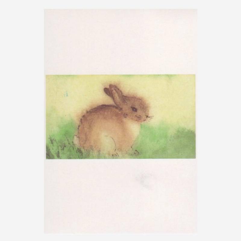 Postkarte Kleiner Hase
