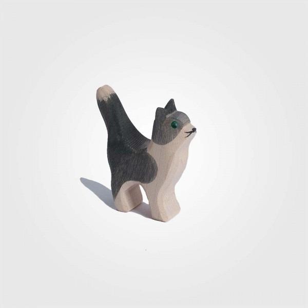Katze klein Kopf hoch