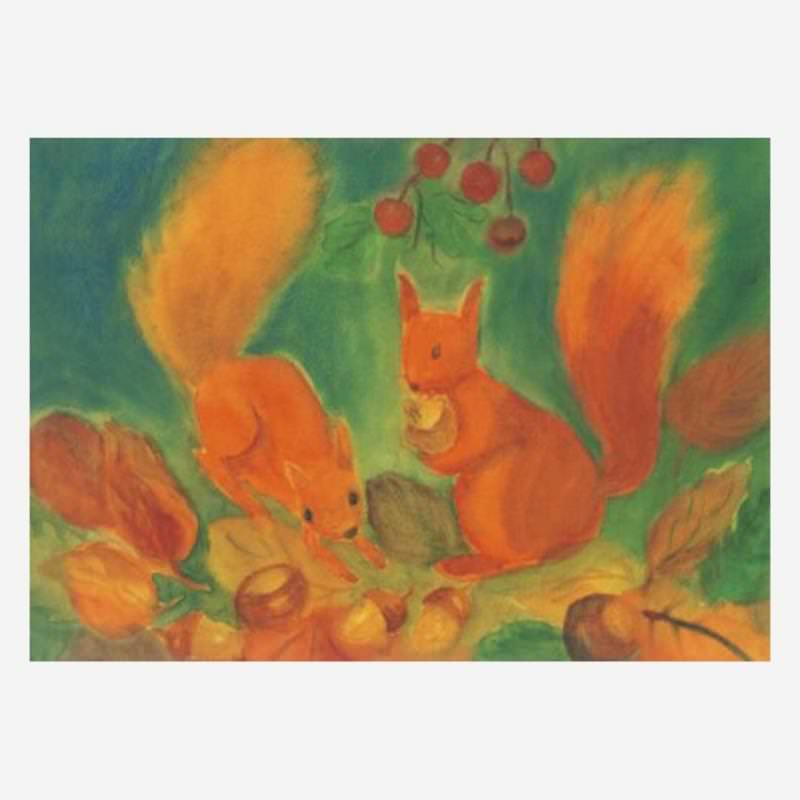 Eichhörnchen (D. Schmidt)