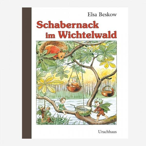Buch Schabernack im Wichtelwald