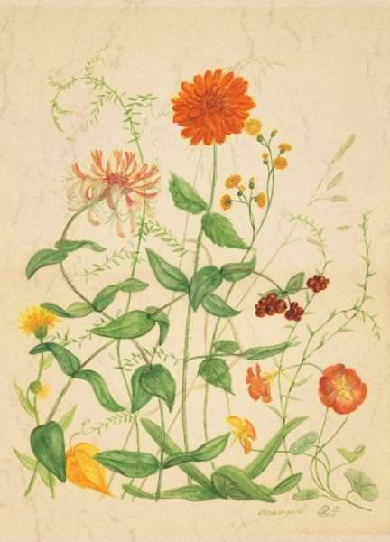 Postkarte Oktobergold