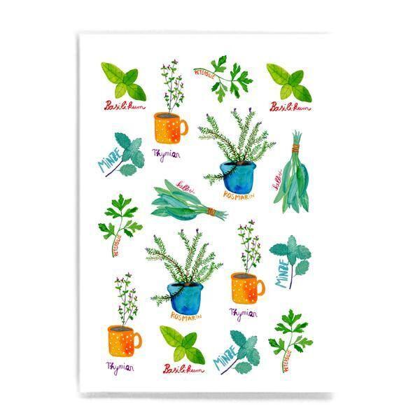 Postkarte Kräuter