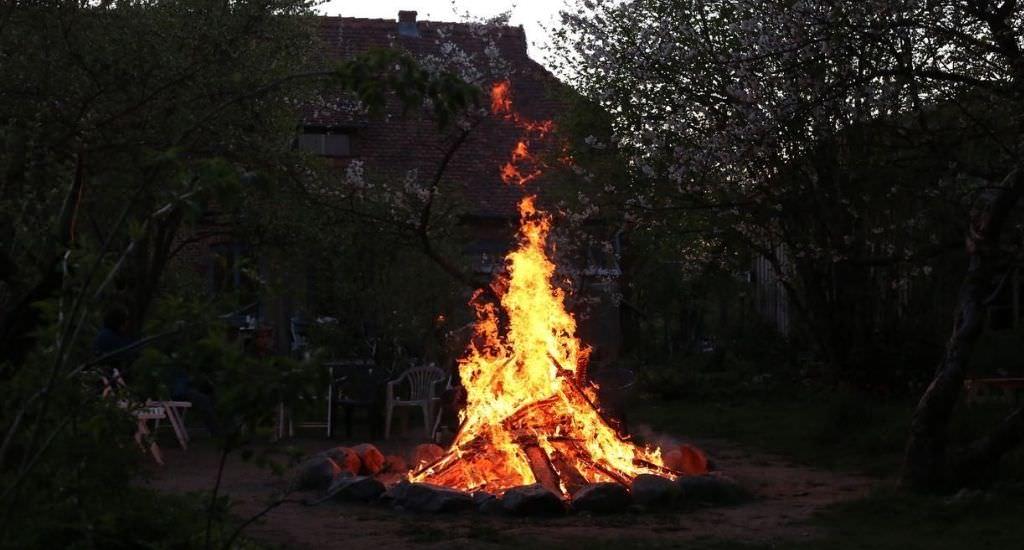 Michaeli-Feuer-2