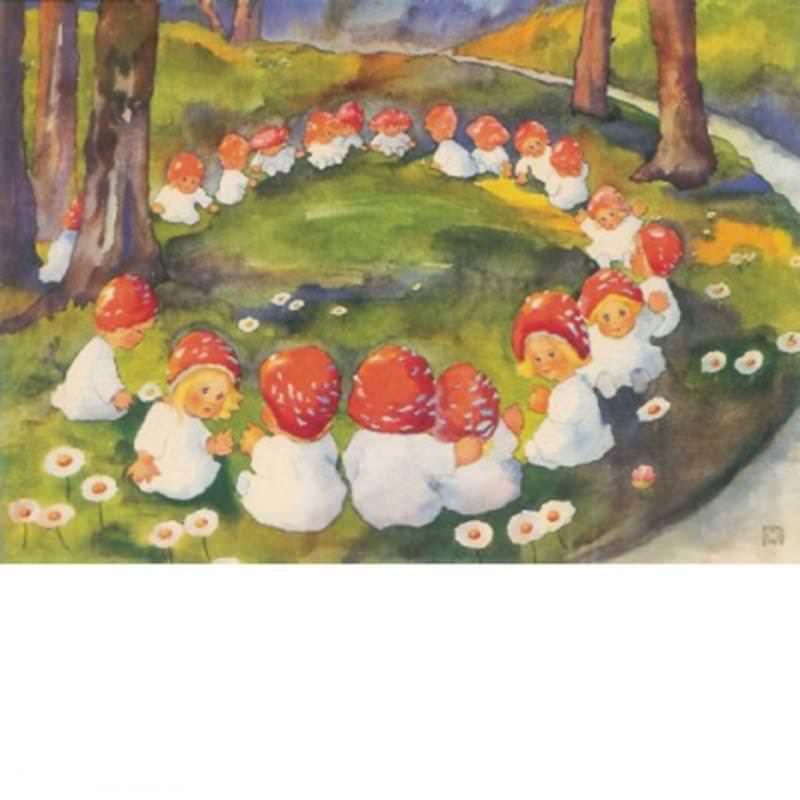 Postkarte Pilzkreis