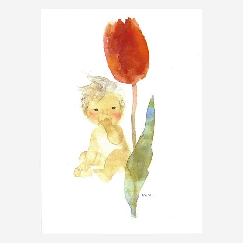 Tulpe und Baby (C. Iwasaki)