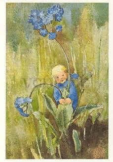 Postkarte Vergissmeinnicht